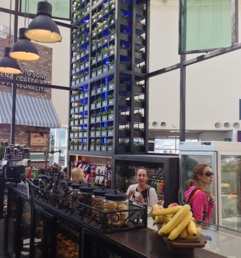 A win – win example of a cafe and the environment